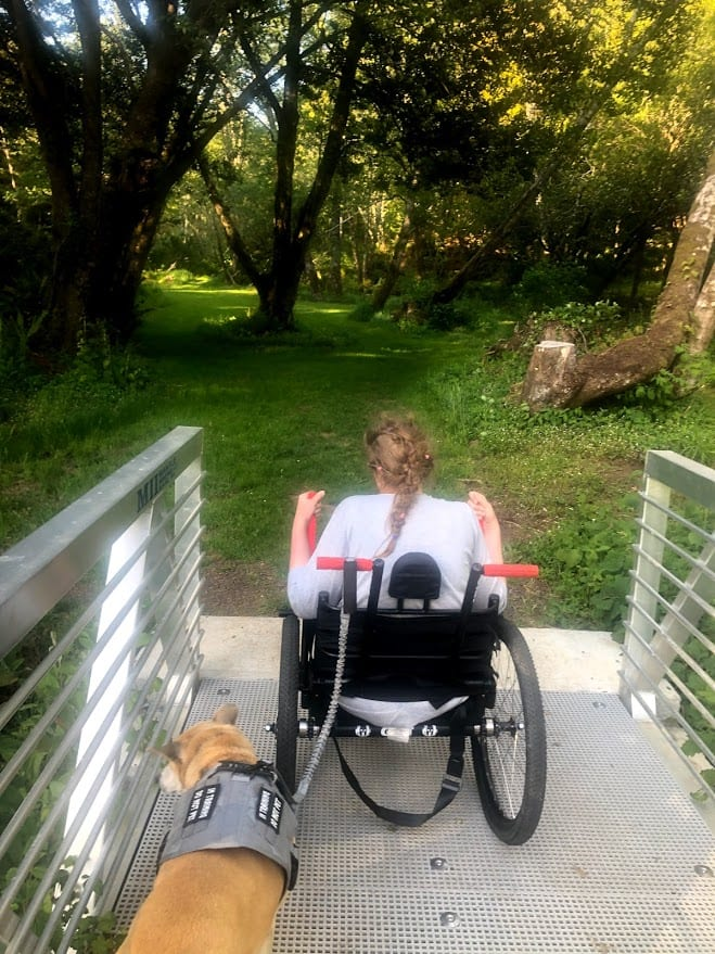 An image of Beth in her GRIT Freedom Chair, with her dog on a leash beside her.